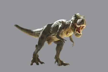 dinosaur on gray background
