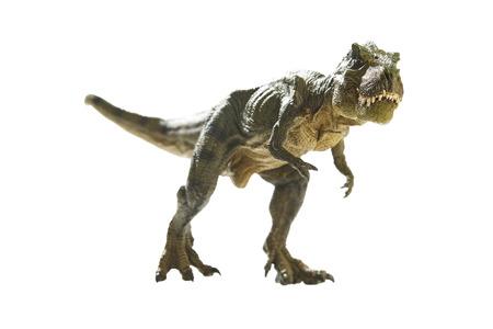 dinosaur on write  background