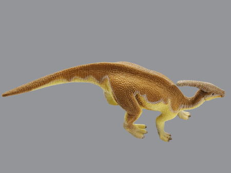 Isolated dinosaur in gray background