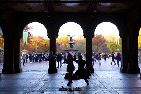 Central Park pond and bridge. New York, USA. Stock Photo