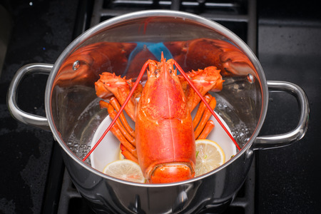 A cooked lobster in the kitchen. Stock Photo