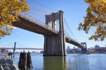 The Brooklyn Bridge and Lower Manhattan skyline seen from Brooklyn Bridge Park. Stock Photo - 68569225