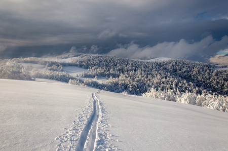 Winter  mountain landscape with lonely ski run photo