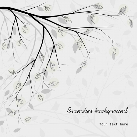 tree branches background