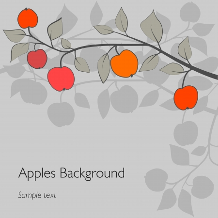 apples: apples on a branch Illustration