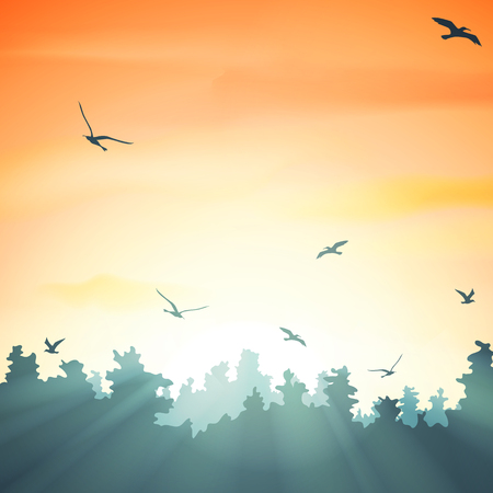 sunset in the forest, vector illustration