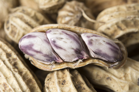 ground nut: Closeup for ground nut. Natural snack food