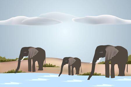 Drinking herd of Elephants - Vector EPS10