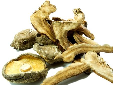 Lingzhi and shitake mushrooms on a white background