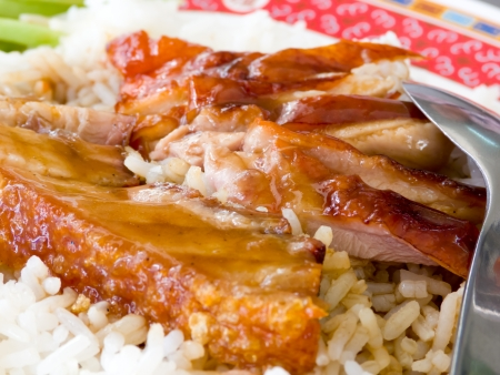 Duck and Crispy Pork over Rice with Sweet Gravy Sauce Stock Photo - 13882295