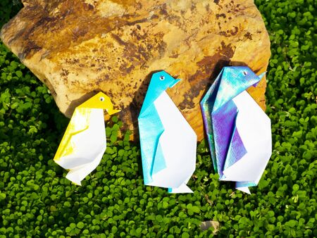 Penguin Origami family are walking along the green plant photo