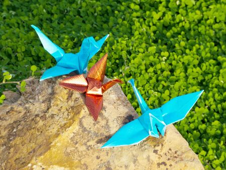 Bird Origami family are resting on the cliff over the green plant photo