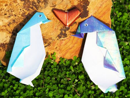Sweetheart Penguin Origami in the green garden photo