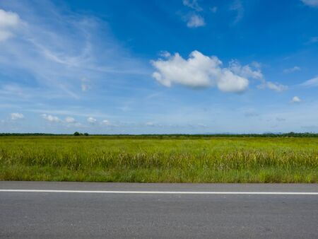 green field and road over blue sky Stock Photo - 14558018
