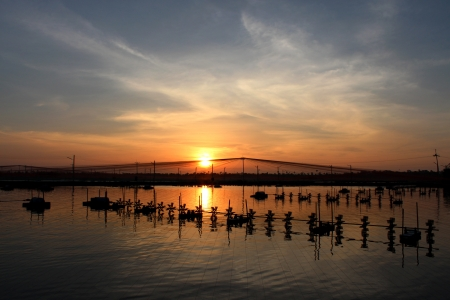 In evening sunset time at shrimps pond