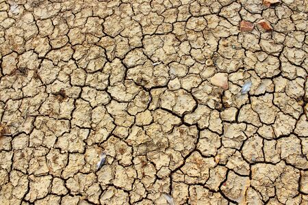 The soil surface is dry and cracked Stock Photo