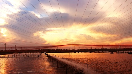 In evening sunset time at shrimps pond paddle wheel aerator are running