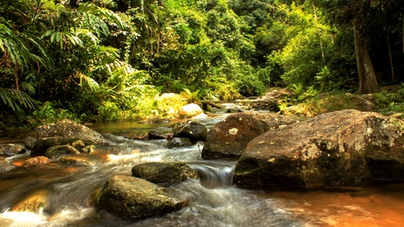 Waterfalls are streams of clear water flowing through rocks large cascades down. A small pool to swim. Stock Photo