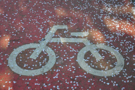 Bicycle lane sign