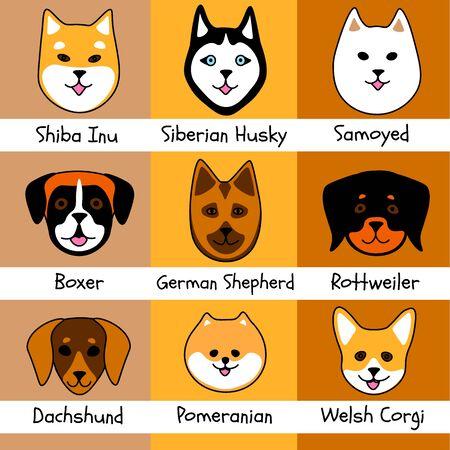 Nine dog breeds: shiba inu and siberian husky, samoyed and boxer, german shepherd and rottweiler, dachshund, pomeranian and welsh corgi