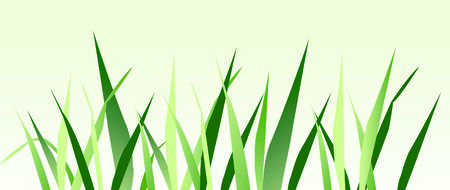 mead: Grass graphic   Illustration