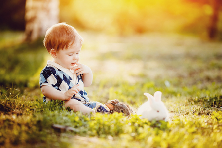 little boy thought about it: he put a finger in his mouth, beside him lies a rabbit on bottom of yellow leaves in the park. Concept to think, reason, childhood, child prodigy. Stock Photo