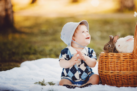 Little boy playing with rabbits in the park, summer and autumn landscape. Concept children and nature, contact zoo. 写真素材