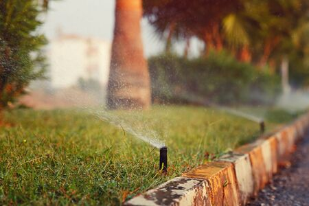 spaying: Lawn sprinkler spaying water over green grass. Irrigation system of street
