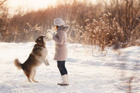 Training of dogs. A girl is training her dog on street in winter