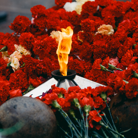 Background of red carnations, eternal fire, soldiers helmets. Concept is the beginning and end of Second World War, memory of soldiers, day of victory, bloody wars.