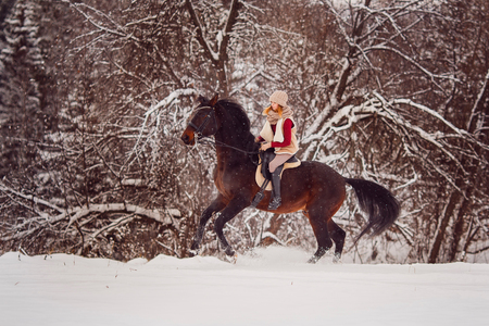 Rider young girl rides brown horse through winter fore. Concept of high speed