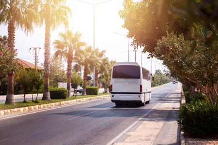 Tour of tourist bus through warm country, sun, palm trees, it's hot. bus leaves. Concept car rest, trip Standard-Bild