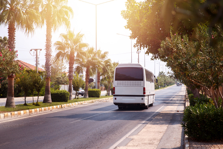 Tour of tourist bus through warm country, sun, palm trees, it's hot. bus leaves. Concept car rest, trip 免版税图像