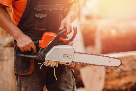 Close-up of chainsaw lies on sawn wood sawmill. Concept logging industry Stock Photo