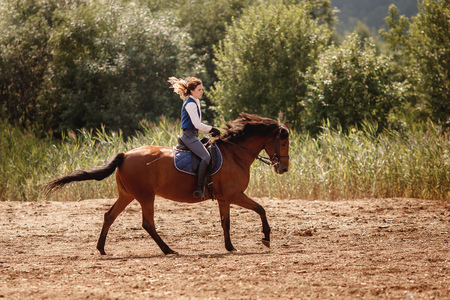 Young horse rider woman jockey on equestrian sport competition. Arena background