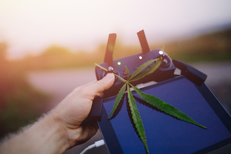 Delivery cannabis marijuana hemp with help of drone through air across border. Concept of dealer contraband, narcotic traffic. Stock Photo - 107413775