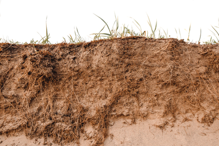 Close-up isolated ground slice with clay sandy earth field.