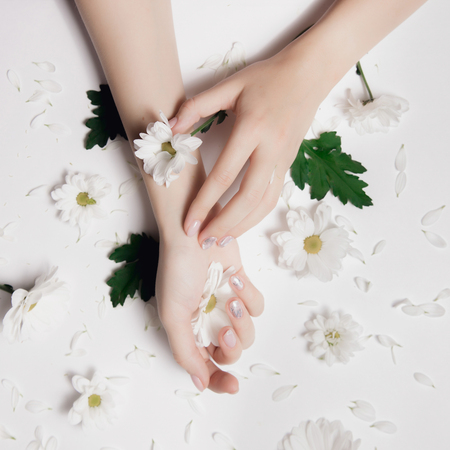 Fashion art skin care and white chamomile chrysanthemums with green leaves in hands of women. Creative beauty photo, sitting at table on light background Stock Photo
