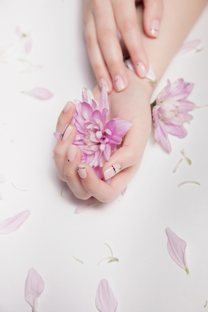 Hands of woman with nude manicure on nails and pink flowers. Top front view Stock Photo