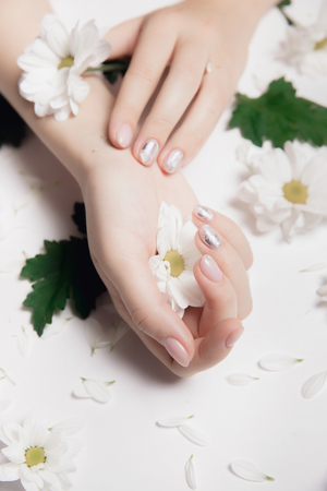 Hands of woman with nude manicure nails and white chamomile chrysanthemums on light background Stock Photo