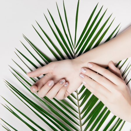 Beautiful female hands with manicure nude close up lying on big, fancy green palm leaf. Top view