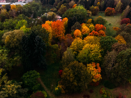 Autumn Park with many different trees, shrubs colorful foliage of green, red, yellow, orange. Minsk, Republic Belarus. Top view air drone