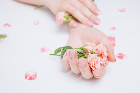 Beautiful tender female hands with pink flowers on a white background, classic manicure. Concept skin cream, winter care, depilation.