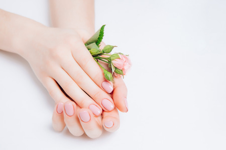 Close-up beautiful sophisticated female hands with pink flowers on white background. Concept hand care spa, anti-wrinkles, anti-aging cream.