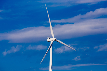 Turbine windmills for generating electricity in environmentally friendly way are installed in field.