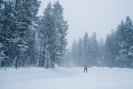 Winter forest, there is strong snow, overcast sky. Man runs on skis.