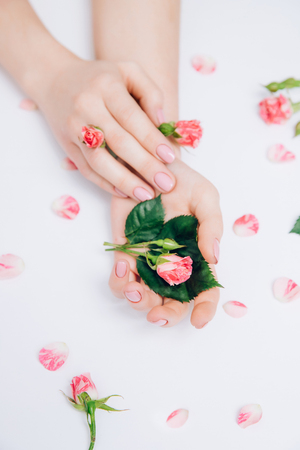Creative photo of fashion female hands with clean skin and pink manicure hold flowers in hand on white background. Spa care concept.