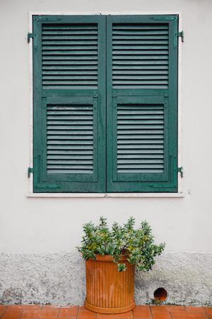 Green window shutters wooden dark vintage, blocking sunlight.