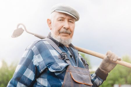 Senior elderly man reclaims soil with hoe on potato field. Concept eco farm vegetable garden