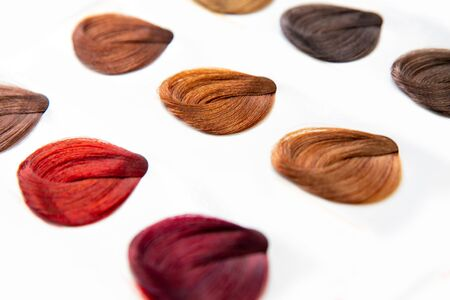 Hair palette dyed different colors. Hairstyle wig tints set for beauty industry